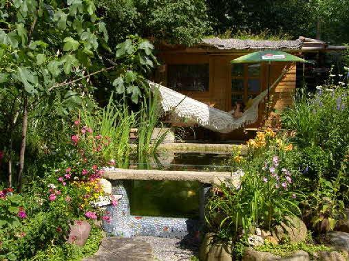 Gartenteich wasserpflanzen for Gartenteich bauen lassen