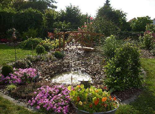 Gartenteich wasserpflanzen for Gartenteich anlegen pflanzen