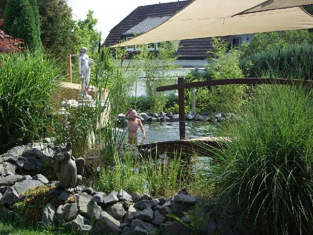 Schwimmteich for Gartenteich bauen lassen